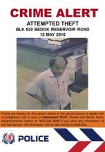 Attempted Theft at Blk 630