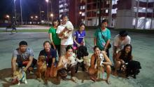 Dog Lovers meet up KamPAWng-style